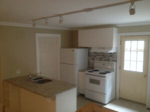 1 Bedroom Apartment - Centrally Located - Available January 1st