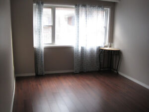 Newly Renovated 3 BR Near Gage Park