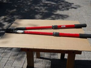 Tree Branch cutter extendable by Corona