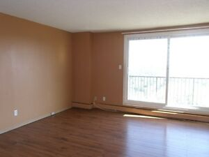DOWNTOWN HIGH RISE 2 BDRM W/RIVER VIEW $1250/mo