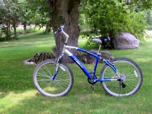 """ Sporty - NEXT- Avalon CS - Comfort Series Bike-Must Sell."""