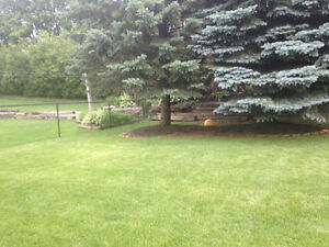 landscaping London Ontario image 7