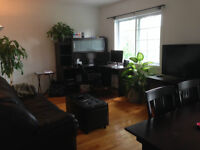 Large 3 1/2 apartment ($350 for july )