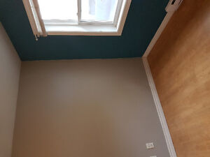 Freshly painted room for rent