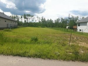 very large lot in Gibbons