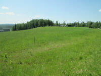 Build your Dream Home/Recreational Retreat Northwest of Calgary