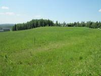 Build your Dream Home/Recreational Retreat Northwest of Calgary
