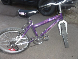"""20"""" girl 10 speed bicycle"""