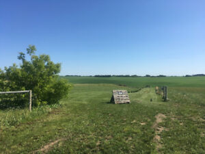 5 Acres 8 Minutes Northeast of Lloydminster