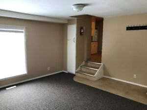 1 Bedroom Apartment for Rent - Great location!!!
