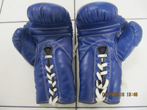 Classic Traditional FBT 10oz Muay Thai Laced Boxing Gloves NEW!