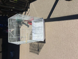 Large bird cage excellent condition need gone by June 1st