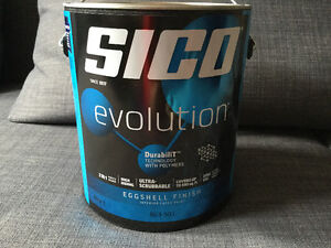 Sico untinted paint