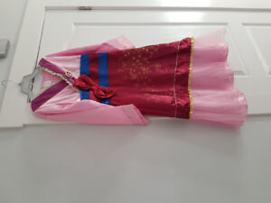 Disney's Princess Mulan costume