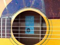 Epiphone Macartney, Noel Gallagher, Peter Frampton acoustic