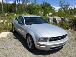2008 Ford Mustang Pony Package Coupe (2 door)
