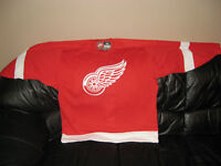 DETROIT RED WINGS TEAM NIKE SPORTS NHL AUTHENTIC JERSEY