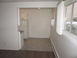 2 Bedroom Apartment Condo for rent $900 mth