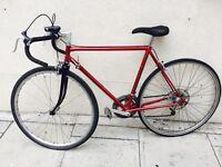Red racing bike grig
