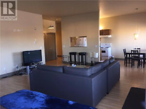 Beautiful, Huge, Downtown Apartment with Raised Ceilings!