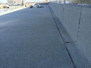 Flat Roofing - Repairs - Leaks? We will stop them! London Ontario image 8