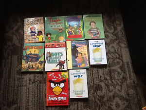 SCHOLASTIC CHAPTER BOOKS NEVER BEEN READ