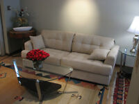 FURNISHED CONDO DOWNTOWN  5 min walk to evrything