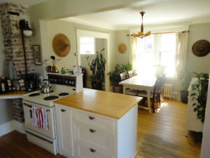 Room for rent Available December 1st. Central Halifax Almon St.