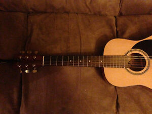 Acoustic Guitar (JR Acoustics) NEW
