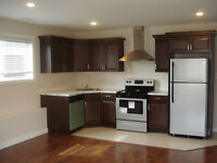 Beautiful basement suite for rent in south side