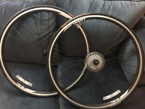 brand new Giant wheel set
