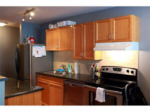 LOOKING FOR A EASY GOING ROOMMATE FOR MY DTOWN CONDO
