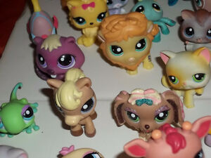 ONTARIO'S LARGEST SELECTION OF LITTLEST PET SHOPS London Ontario image 4