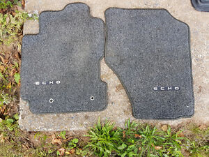 Genuine Echo mats in awesome shape