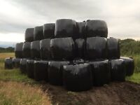 2016 Large Round Bales of Haylage