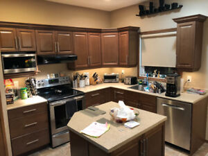 Countertops and Sink For Sale