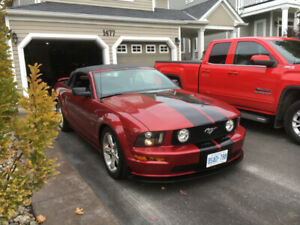 2006 Mustang Gt Convertible Certified Low KM