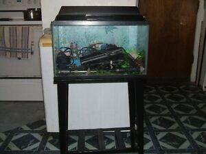 FISH AQUARIUM 10 GALLON
