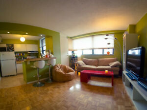$2050 Downtown 1 Bedroom Condo, 650 sq feet, furnished apartment