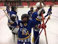 Lethbridge Ringette Looking for Goaltenders (hockey)