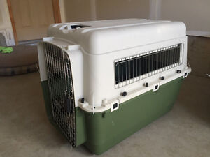 Large Plastic Puppy Dog Crate Kennel - AIRPLANE APPROVED