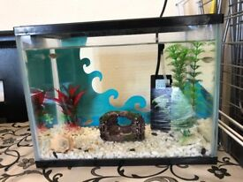 Children's Fish Tank with Fish Full Set Up