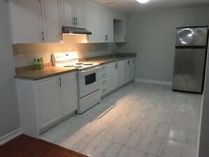 newly built bright basement unit in milton