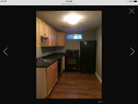 Young professional looking for roomate to share SW basement