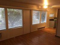 One Bedroom Apartment to Rent, Downtown Penticton, BC