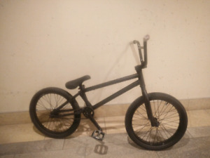 Project Painted Black bmx