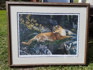 Ducks Unlimited Cougar Print
