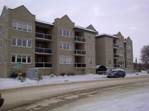 LUMSDEN FURNISHED 2 BEDROOM PLUS DEN CONDO
