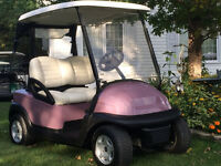 ~ The Golf Cart Guy ~ 2011 CLUB CAR ELECTRIC GOLF CART