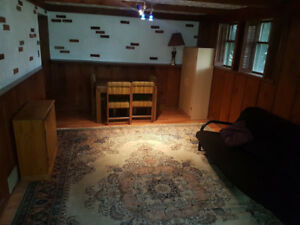 Bachelor basement apt available Dec 1st.  Everything included.